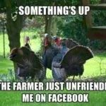 25 amusing thanksgiving memes (funny memes)