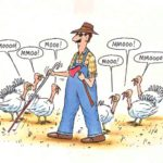 30 funny thanksgiving jokes for any good laugh