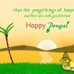 50+ pongal whatsapp status & messages 2017 – whatsapp lover