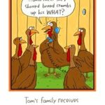 Funny poultry pictures thanksgiving 2016