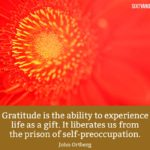 Listed here are the most popular gratitude quotes to keep you going this thanksgiving day