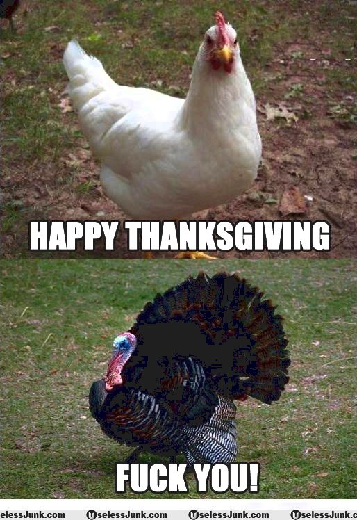 Funny thanksgiving memes of poultry for buddies n family for, make