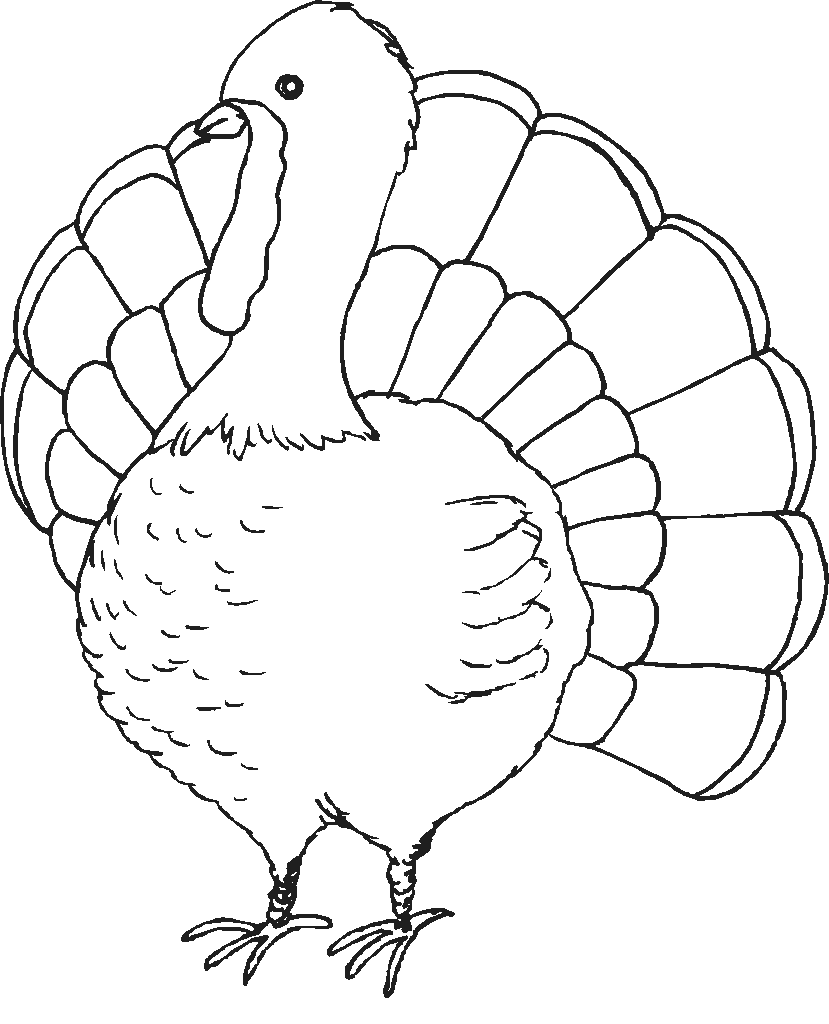 A Turkey For Thanksgiving Coloring Pages #1