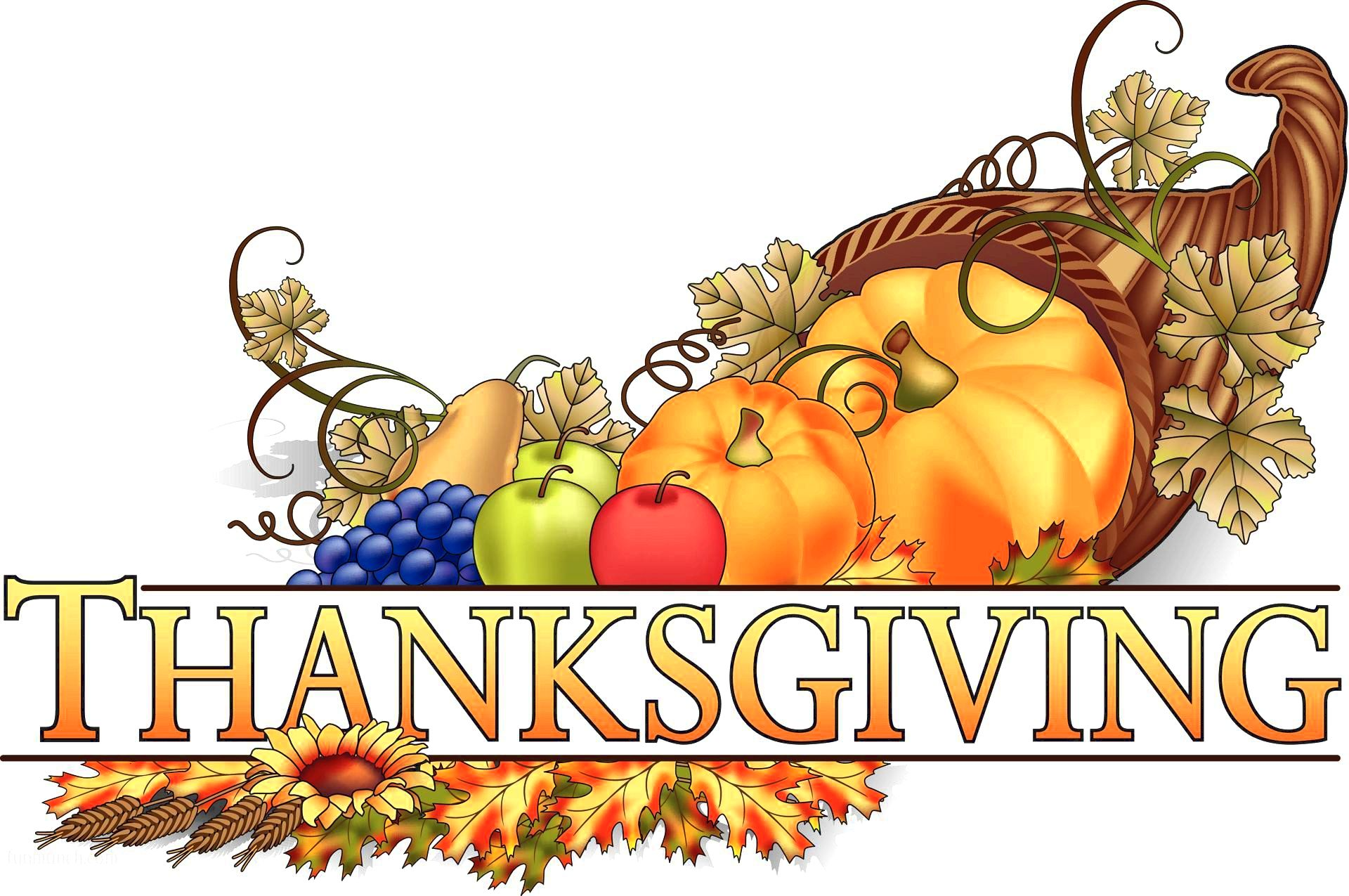 Happy Thanksgiving Day Images Pictures HD wallpapers 2016
