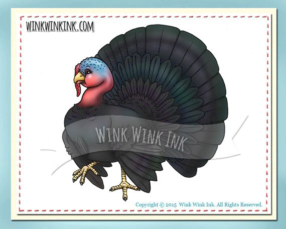 Digital stamp - tom poultry - thanksgiving digi with bonus colored images from winkwinkink on etsy studio the artwork his or her