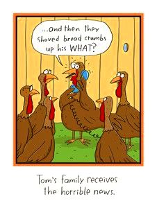 Funny poultry pictures thanksgiving 2016 honestly felt sorry with