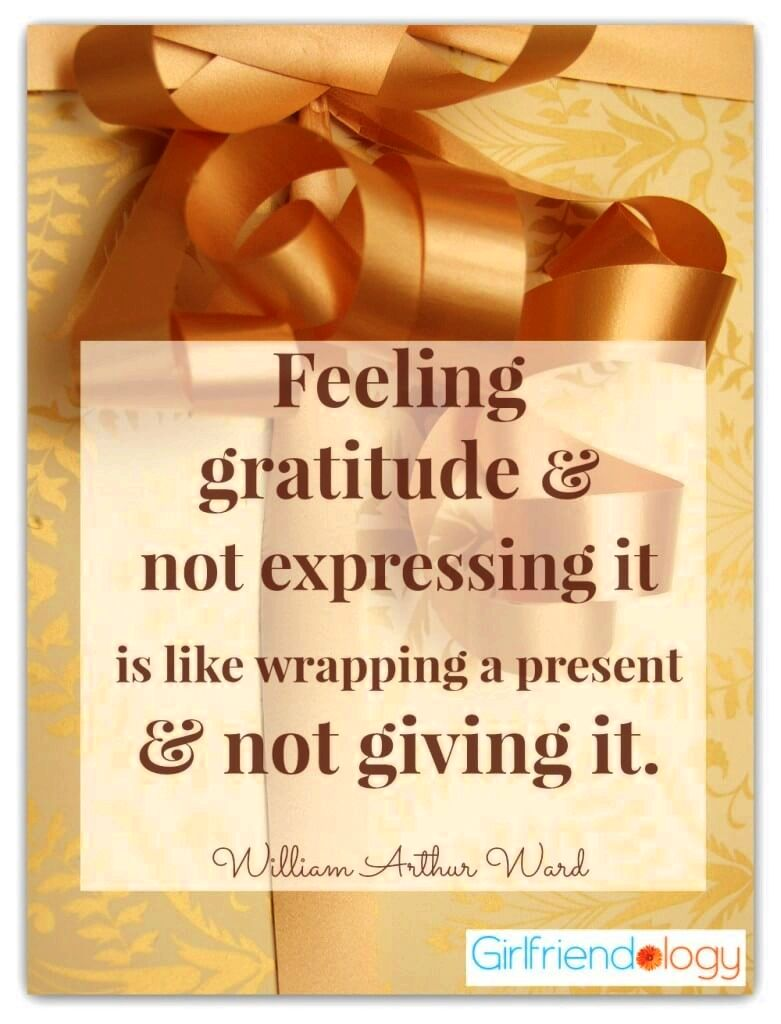 Thanksgiving Quote Feeling Gratitude