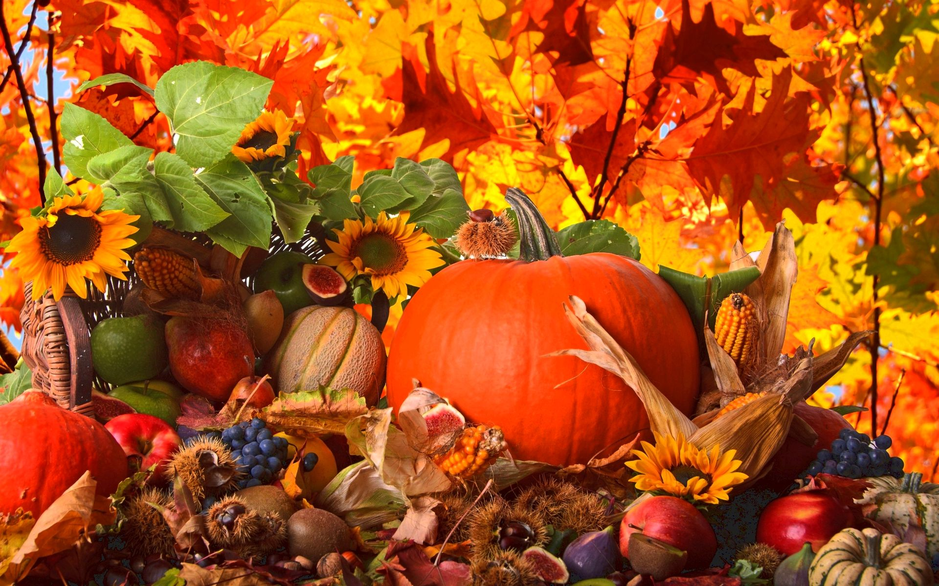 Thanksgiving wallpapers, thanksgiving backgrounds, thanksgiving images - desktop nexus JanineMelanie     Date